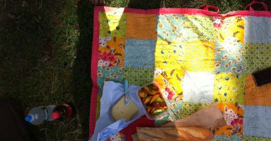 30/30 a picnic in Central Park